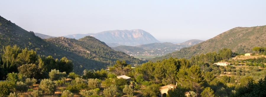 Caserio view