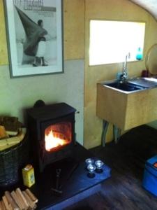 Inside, Living Room Treehouse