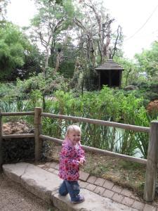Zoo at Doue
