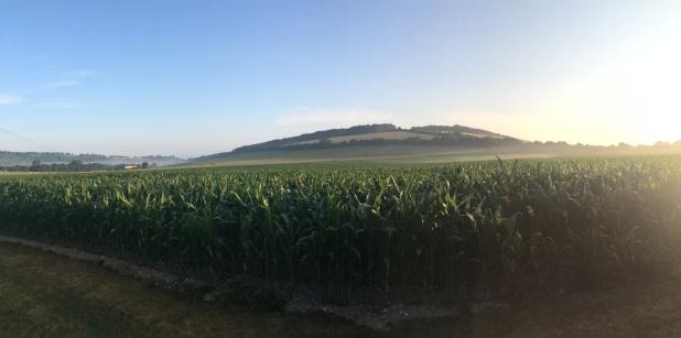 Dawn view, Meon Springs