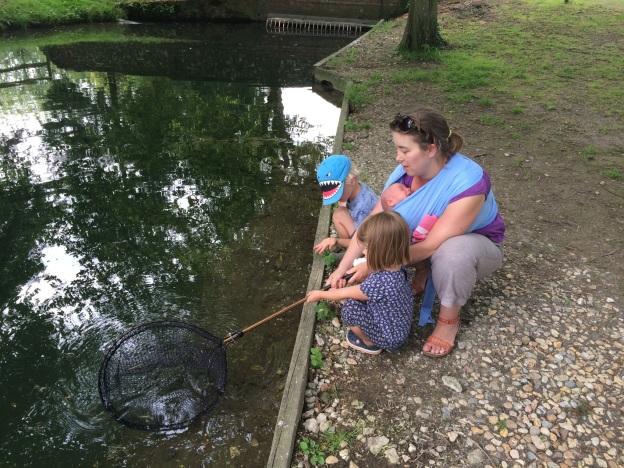 Fishing, Meon Springs