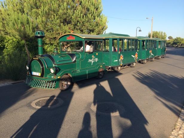 Pine Cliffs train