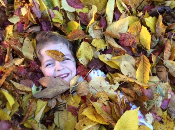 Playing in the leaves, Thurlby