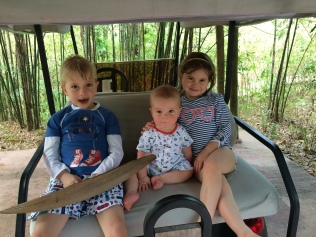 Golf buggy! Soneva Kiri