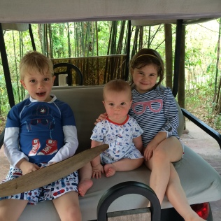 Golf buggy! Soneva Kiri